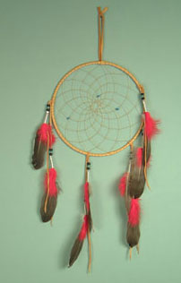 Iroquois 10 inch dream catcher