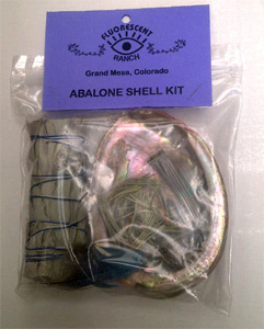 Abalone shell kit, abalone shell, white sage stick, feather, cedar and copal