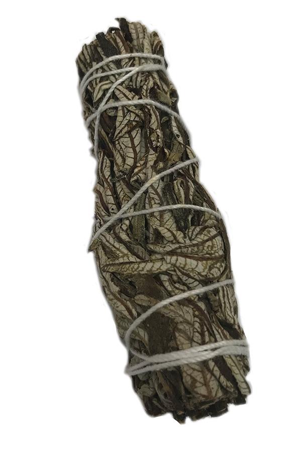 Yerba Santa 4.5 inch