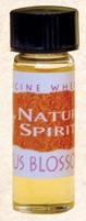 Cactus Blossom Medicine Wheel Oils