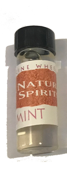 Mint Medicine Wheel Oils
