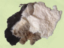 Rabbit pelts  specify: white, brown or grey. Approx. 11 x 14 inch